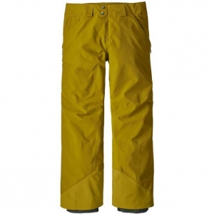 Spodnie narciarskie Patagonia Men's Powder Bowl GORE-TEX Pants Textile Green R: M